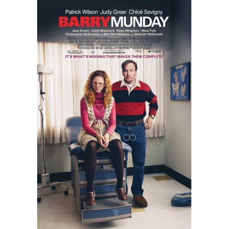 Barry Munday POSTER (27x40) (2010)