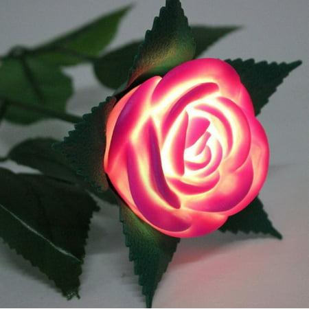 LED Light Up Roses - Red](Led Light Up)