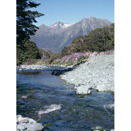 Cascade Creek and Stuart Mountains, South Island, New Zealand Print Wall Art By Ian Griffiths