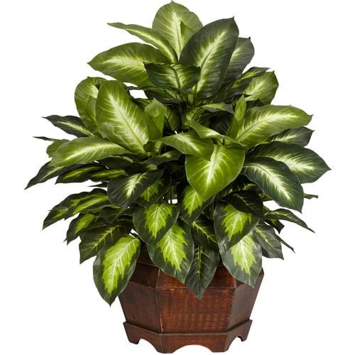 golden dieffenbachia silk plant   walmart