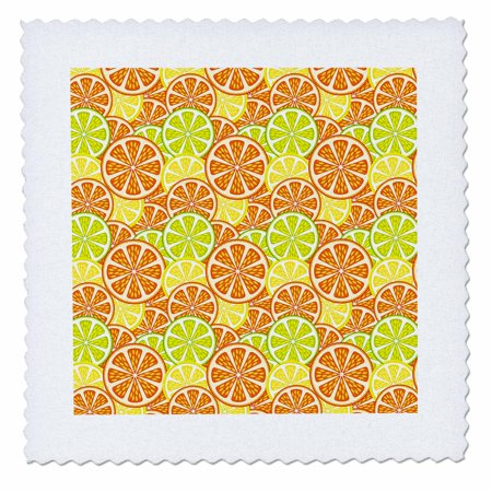 Roses Quilt Pattern - 3dRose Lemon, Lime and Orange Slices Pattern - Quilt Square, 6 by 6-inch