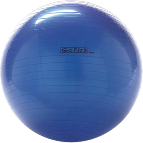 GoFit 75cm Exercise Ball with Pump