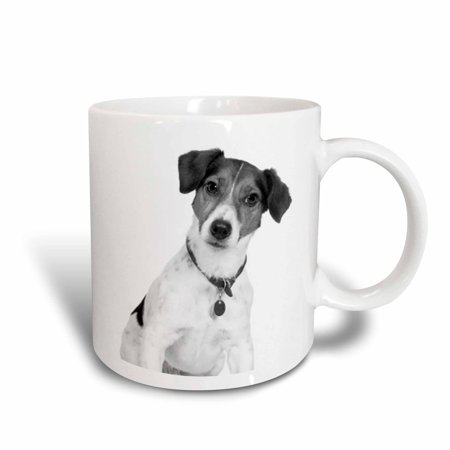 3dRose Rat Terrier, Ceramic Mug, 11-ounce