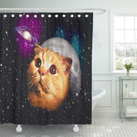 XDDJA Pet Cat Moon and Catmoon Kittens Kitty Tabby Cute Shower Curtain 66x72 inch - image 1 of 1