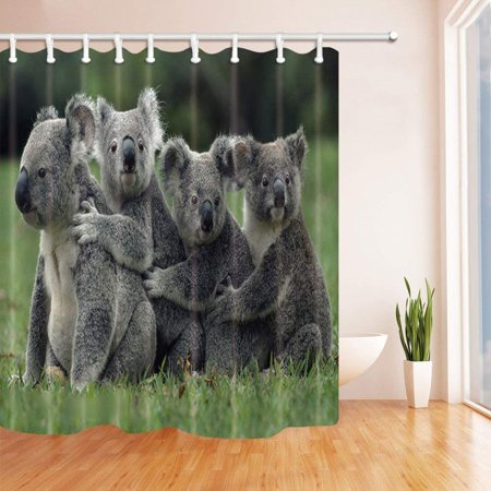 BSDHOME Safari Four Wild Animals Sloth Embrace Together Sit on Grass Against Green Forest Polyester Fabric Bath Curtain, Bathroom Shower Curtain 66x72 inches - image 1 de 1