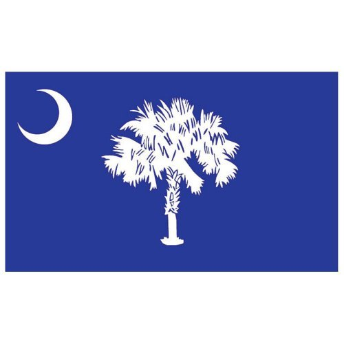 South Carolina Flag 3x5ft Nylon Walmartcom