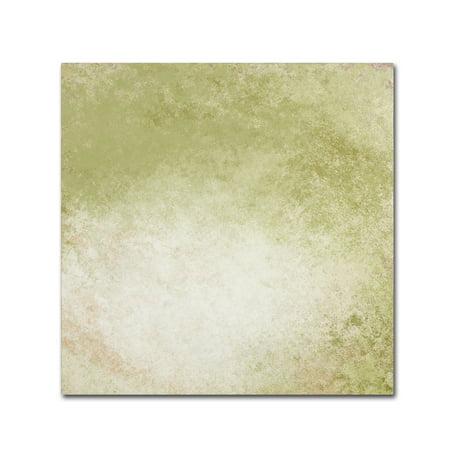 Trademark Fine Art Soft Wallpaper Green Canvas Art By Marcee Duggar