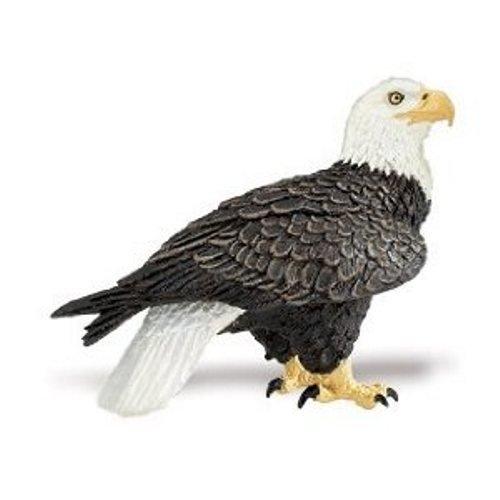 Safari Ltd  Wings of the World Bald Eagle