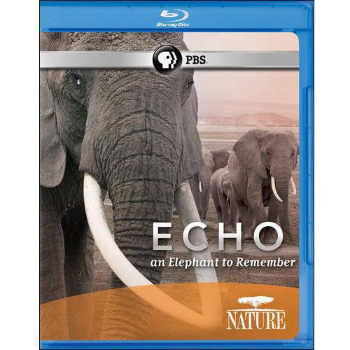 Nature: Echo - An Elephant To Remember (Blu-ray) (Widescreen)
