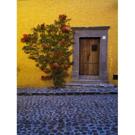 Mexico, San Miguel de Allende, Doorway with Flowering Bush Print Wall Art By Terry