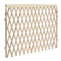 Evenflo Expandable Wide Swing Gate