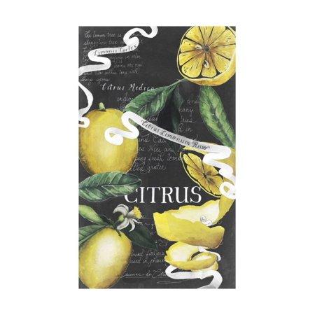 Citrus Board (Chalkboard Citrus II Print Wall Art By Grace Popp)