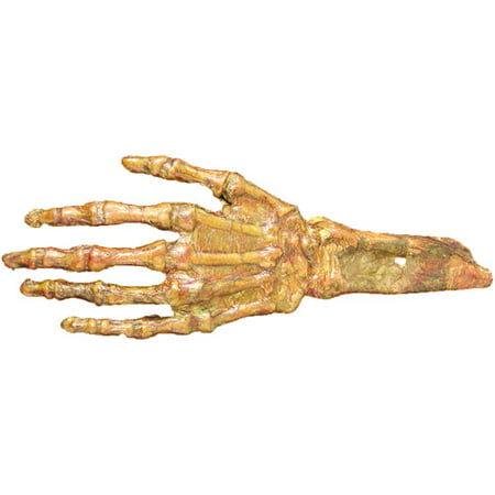 Life-Size Hand Rotted Flesh and Bone Halloween Accessory