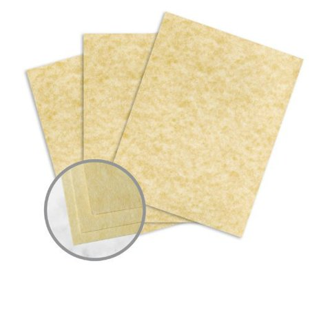 Astroparche Ancient Gold Card Stock - 8 1/2 x 11 in 65 lb Cover Vellum 30% Recycled 250 per Package (Gold Card Stock)