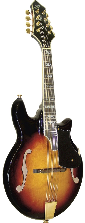 Gold Tone Rigel GM-110 Mandolin by Gold Tone