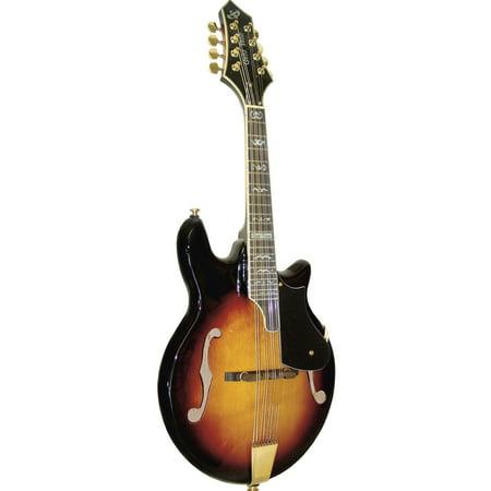 Gold Tone Rigel Gm 110 Mandolin