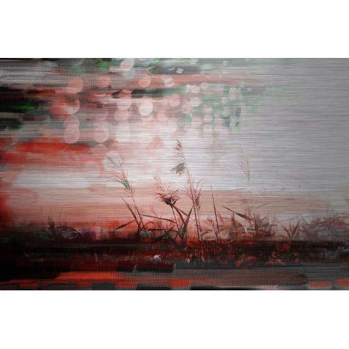 Parvez Taj Red Sun Drops - Metal Art Print on Brushed Aluminum