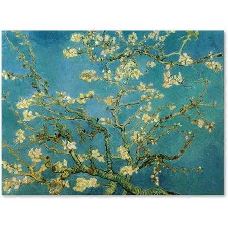 "Trademark Fine Art ""Almond Branches In Bloom"" 1890 Canvas Art by Vincent van Gogh"