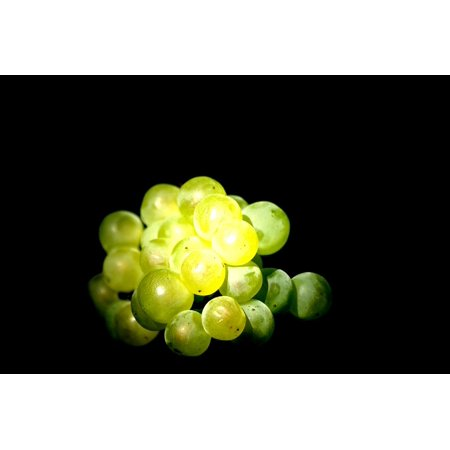 LAMINATED POSTER Drink Grapes Yellow Green Alcohol France Wine Poster Print 24 x 36