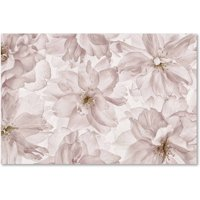Trademark Fine Art 'Translucent Cherry Blossom' Canvas Art by Cora Niele
