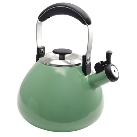 3 Quart Whistling Tea Kettle in Mint Green