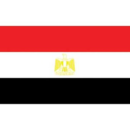 Egypt Flag On A Stick 12