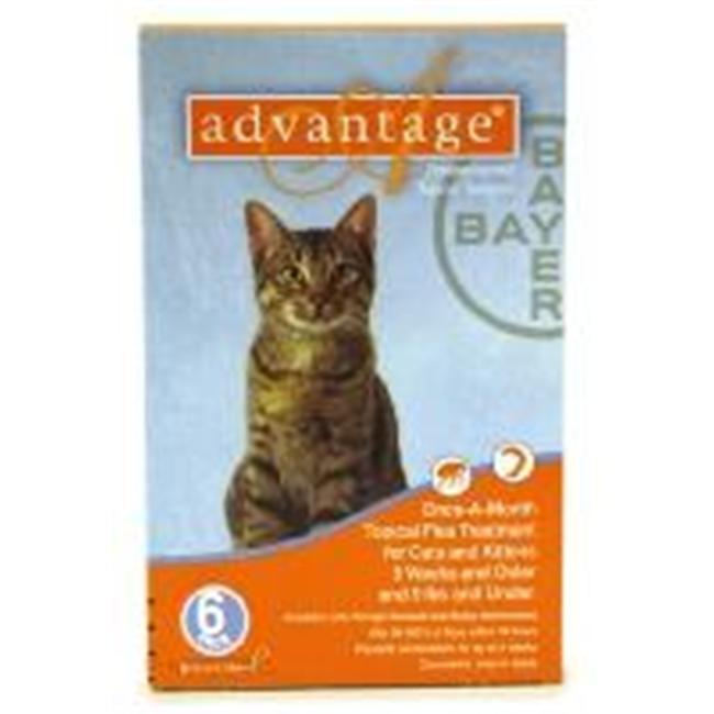 Bayer ADVANTAGE6-ORANGE Advantage 6 Pack Cat  0 - 9 Lbs.  - Orange