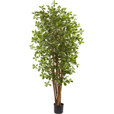 Nearly Natural 6' Black Olive Silk - Black Olive Tree