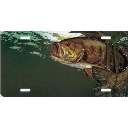 Small mouth bass fish license plate Fishing license at walmart
