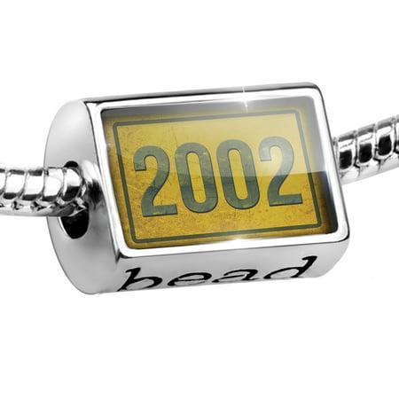 Bead Birth Year 2002 Charm Fits All European (2002 Charmes)