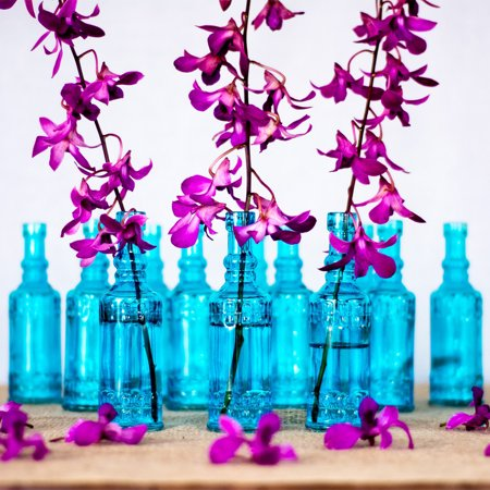 Luna Bazaar Small Vintage Glass Bottle Set 65 Inch Calista