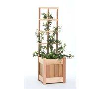 All Things Cedar PL10U-T 2pc.  Planter with Trellis
