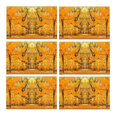 YUSDECOR Central Park Autumn in Midtown Manhattan New York City Placemats Table Mats for Dining Room Kitchen Table Decoration 12x18 inch,Set of 6 - image 4 of 4