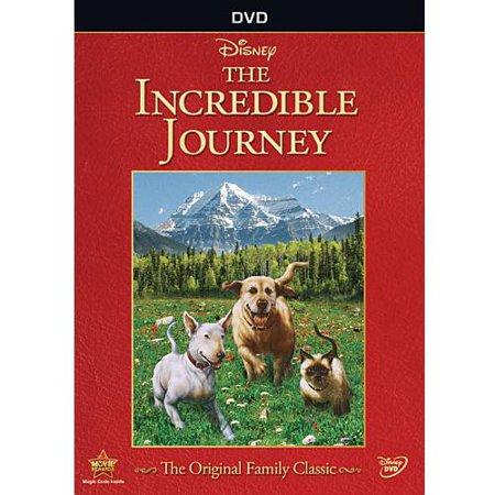 Incredible Journey  Widescreen