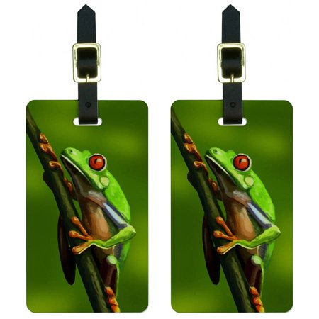 Green Red Eyed Tree Frog Tropical Rainforest Luggage Tags Suitcase ID, Set of 2