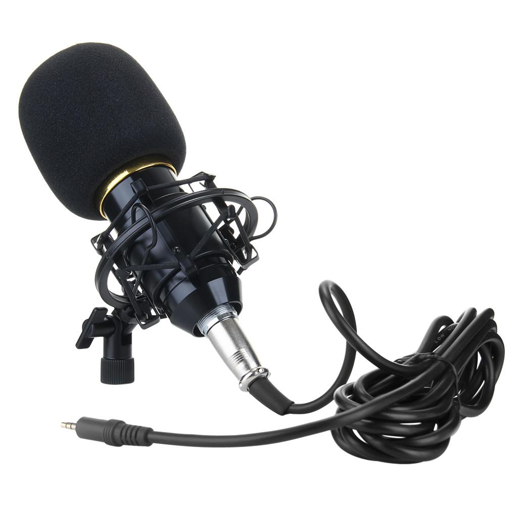 Professional Condenser Microphone BM-700 Mic Studio Sound Recording Shock  Mount Black