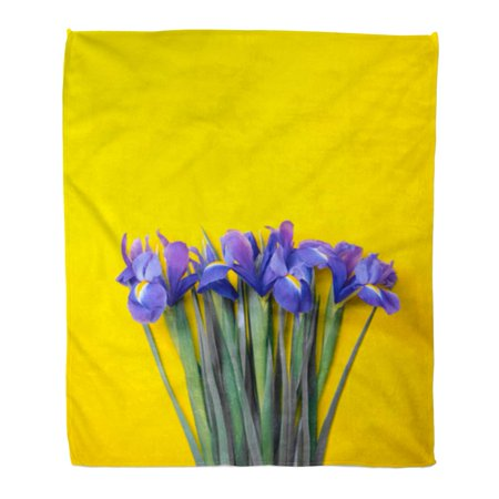 KDAGR Flannel Throw Blanket Blue Iris Lilac Lie on Yellow Top View Flatlay Soft for Bed Sofa and Couch 50x60 Inches