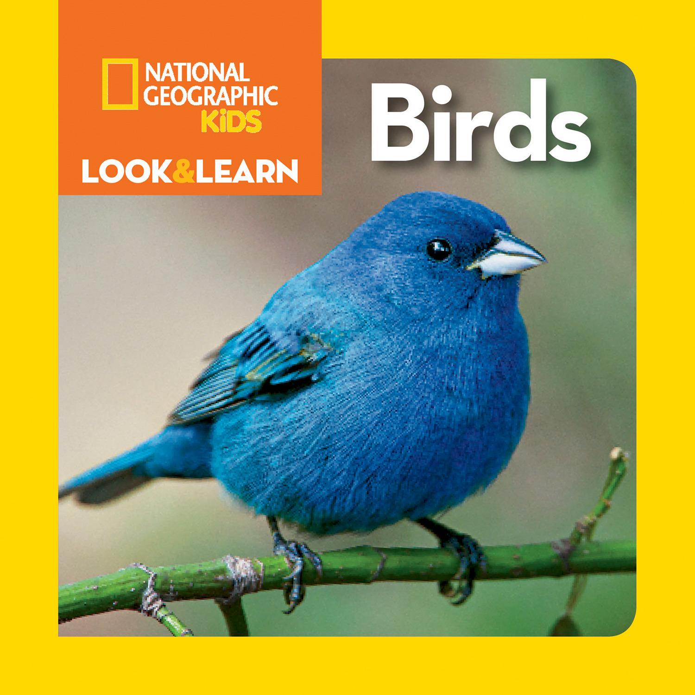 Birds (Board Book)