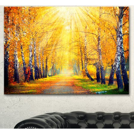 Autumn Design - Design Art 'Yellow Autumn Trees in Sunray' Photographic Print on Wrapped Canvas