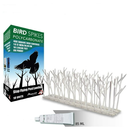 Aspectek Polycarbonate Bird Spikes Kit, 10 Feet with Transparent Silicone Glue Tube