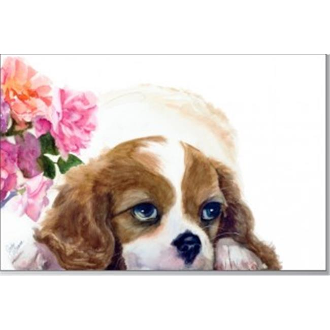 Rainbow Card Company PC300-DU Puppy Post Cards -25 Pack Duchess