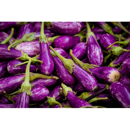 Baby Eggplants (Baby Eggplants Fresh Produce Photo Poster Print Print Wall)