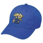 9e85b5671 NCAA College ADULT KENTUCKY Wildcats Blue Hat Cap Adjustable Velcro TWILL