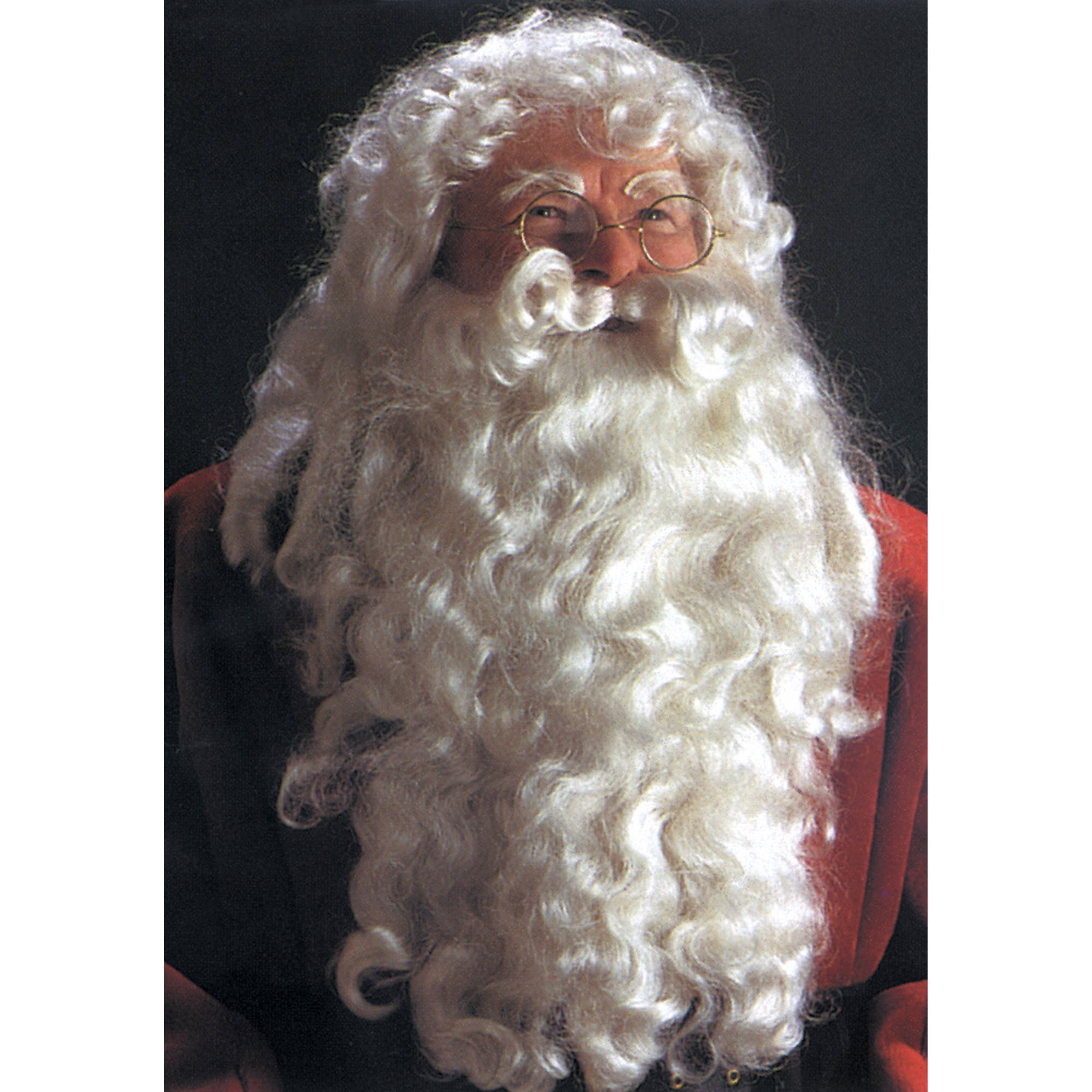 Deluxe Santa Wig and Beard Adult Halloween Accessory