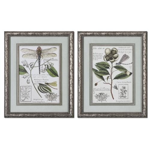 "Set of 2 ""Grandiflora"" Insect & Botanical Print Framed Wall Art 32"""