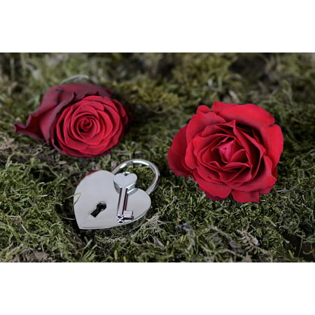 - LAMINATED POSTER Red Key Open Red Rose Heart Castle Rose Poster Print 24 x 36