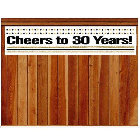 30th Anniversary Decorations (Item#030CIB 30th Birthday / Anniversary Cheers Wall Decoration Indoor / OutDoor Party Banner (10 x)