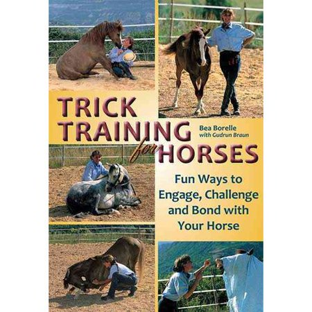 Trick Training For Horses  Fun Ways To Engage  Challenge  And Bond With Your Horse