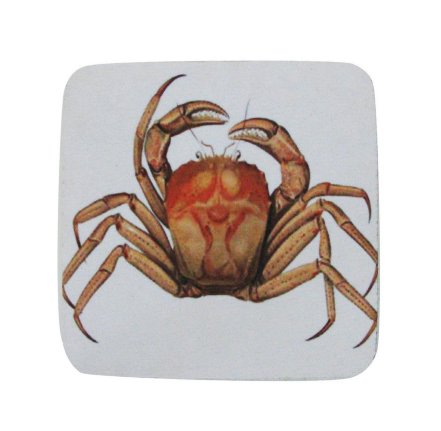 Pack of 8 Absorbent Antique Style Mud Crab Illustration Cocktail Drink Coasters 4""