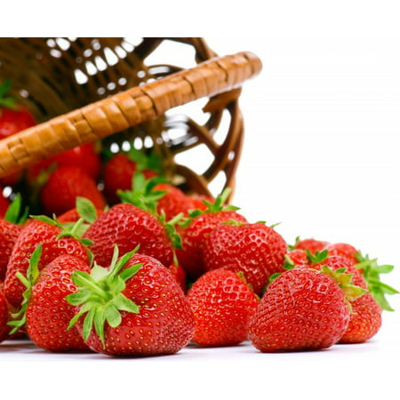 Seascape Everbearing Strawberry 25 Bare Root Plants - BEST